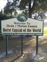 Welcome to Ocala Florida
