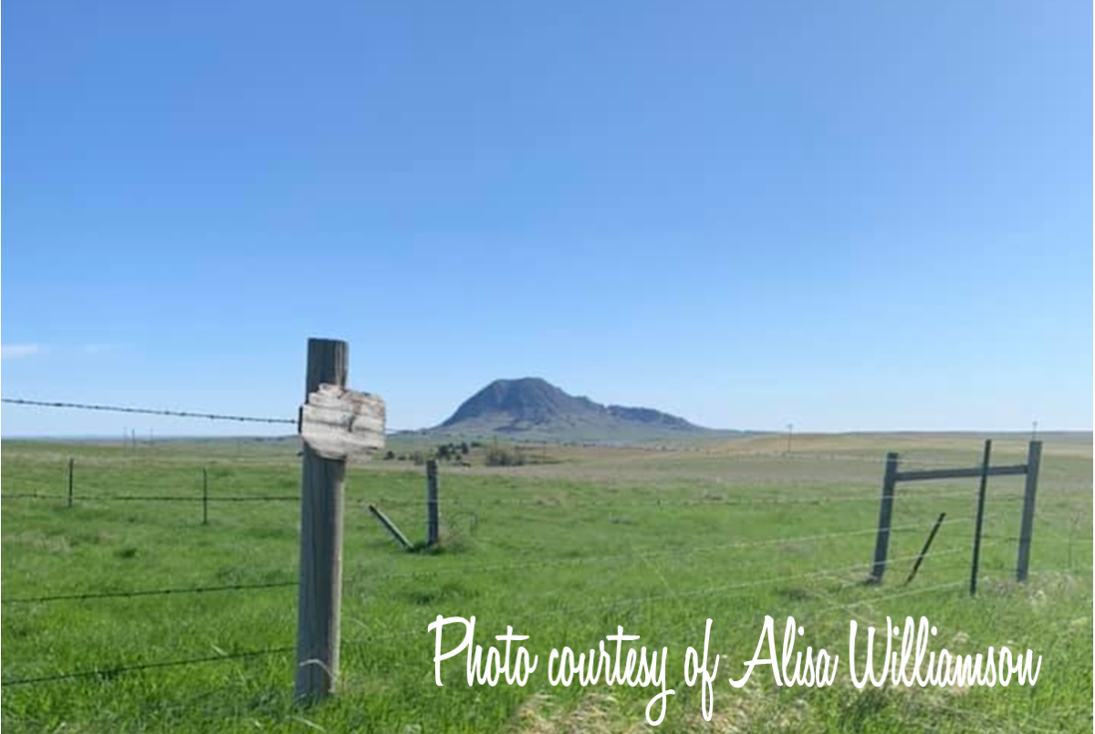 Bear Butte Photo, Courtesy of Alisa Williamson